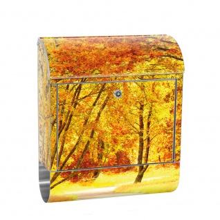 Edelstahl Wandbriefkasten XXL mit Motiv & Zeitungsrolle | Herbstblätter Wald Bäume Baum Forest Herbst | no. 0079