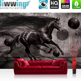liwwing Fototapete 368x254 cm PREMIUM Wand Foto Tapete Wand Bild Papiertapete - Tiere Tapete Pferd Tier Kugeln Schatten Mähne anthrazit - no. 2533