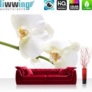 liwwing Vlies Fototapete 400x280 cm PREMIUM PLUS Wand Foto Tapete Wand Bild Vliestapete - Blumen Orchidee Natur - no. 201