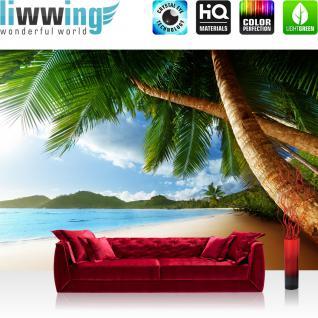 liwwing Vlies Fototapete 400x280 cm PREMIUM PLUS Wand Foto Tapete Wand Bild Vliestapete - LONELY BEACH - Strand Meer Palmen Beach 3D Ozean Palme - no. 004
