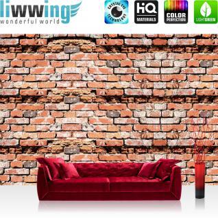 liwwing Vlies Fototapete 312x219cm PREMIUM PLUS Wand Foto Tapete Wand Bild Vliestapete - Steinwand Tapete Steinmauer Mauer Steine Wand rot - no. 2399