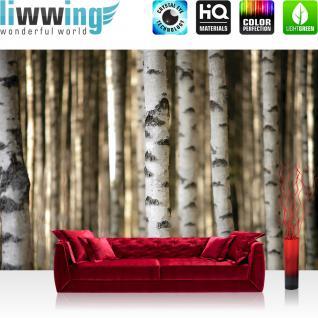 liwwing Fototapete 368x254 cm PREMIUM Wand Foto Tapete Wand Bild Papiertapete - Wald Tapete Bäume Birken Wald weiß - no. 2553