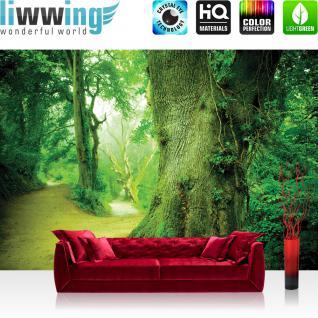 liwwing Vlies Fototapete 300x210 cm PREMIUM PLUS Wand Foto Tapete Wand Bild Vliestapete - Wald Tapete Baum Weg Blätter Grün Wald Stamm grün - no. 865