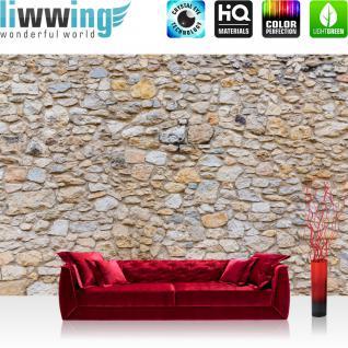 liwwing Vlies Fototapete 350x245 cm PREMIUM PLUS Wand Foto Tapete Wand Bild Vliestapete - Steinwand Steinoptik Steine Wand Mauer Steintapete - no. 149