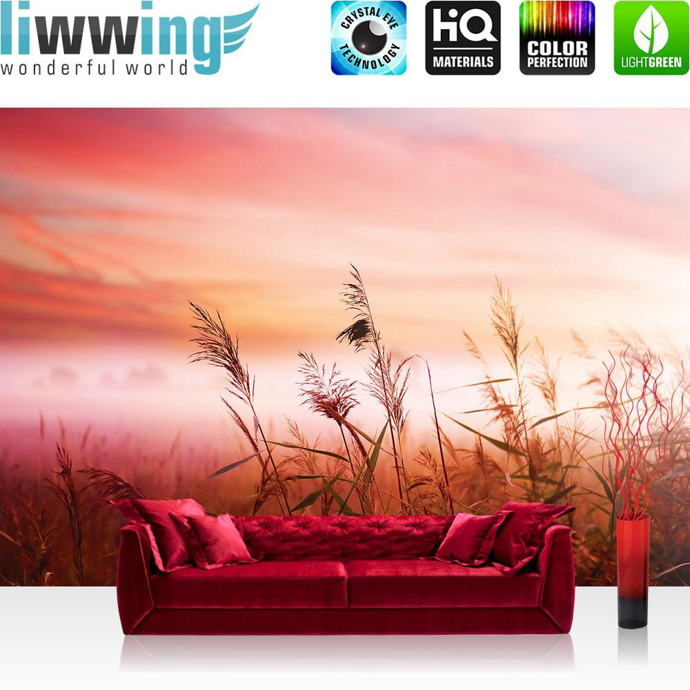 Liwwing Vlies Fototapete 152.5x104cm PREMIUM PLUS Wand Foto Tapete Wand Bild Vliestapete - Sonnenaufgang Tapete Sonne Pflanzen Himmel rot - no. 1621