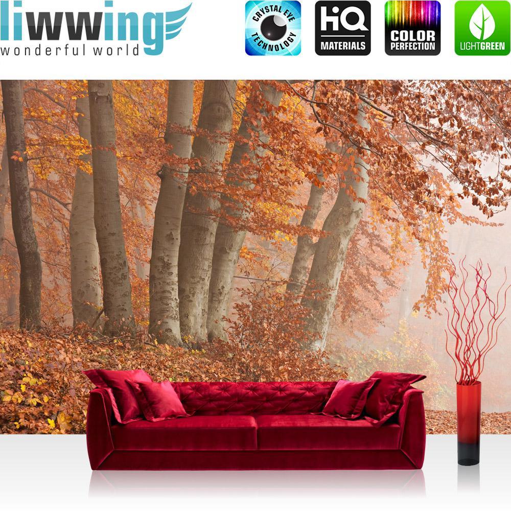 liwwing Fototapete 254x168 cm PREMIUM Wand Foto Tapete Wand Bild ...