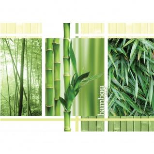 Fototapete Bambus Tapete Blätter Wald Natur grün | no. 539