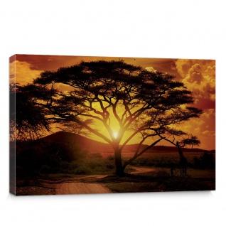 Leinwandbild Sonnenuntergang Baum Weg Afrika Giraffe Romantik Abenddämmerung Orange   no. 284