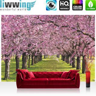 liwwing Vlies Fototapete 208x146cm PREMIUM PLUS Wand Foto Tapete Wand Bild Vliestapete - Natur Tapete Bäume Blüten Wiese rosa - no. 2950