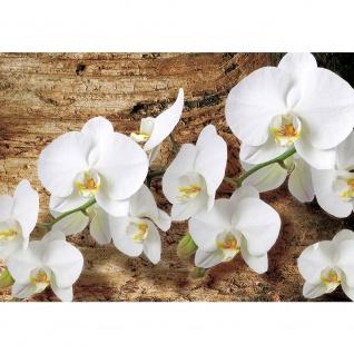 Fototapete Orchideen Tapete Blume Holzhintergrund Holz braun | no. 1323
