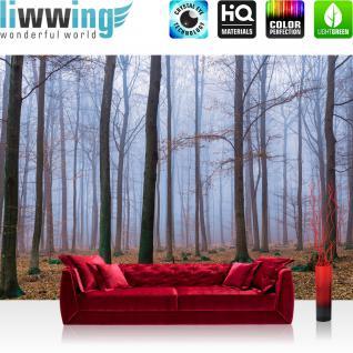 liwwing Vlies Fototapete 350x245 cm PREMIUM PLUS Wand Foto Tapete Wand Bild Vliestapete - Wald Tapete Bäume Laub Herbst Nebel braun - no. 819