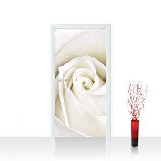 Türtapete - Rose Blumen Blüte | no. 1099