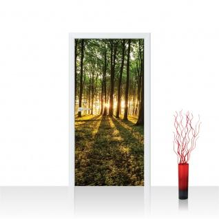 Türtapete - Sonnenuntergang Wald Bäume Wiese   no. 638