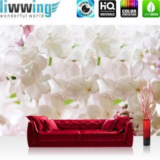 liwwing Vlies Fototapete 312x219cm PREMIUM PLUS Wand Foto Tapete Wand Bild Vliestapete - Orchideen Tapete Blumen Blüten Blätter Orchideen weiß - no. 3033