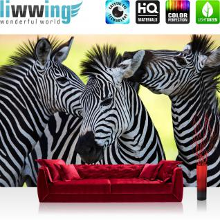 liwwing Vlies Fototapete 208x146cm PREMIUM PLUS Wand Foto Tapete Wand Bild Vliestapete - Tiere Tapete Zebras Tiere Streifen Muster schwarz weiß - no. 2555