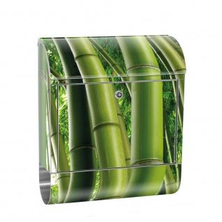 Edelstahl Wandbriefkasten XXL mit Motiv & Zeitungsrolle   Bambus Wald Bambuswald Dschungel Natur tropisch   no. 0075