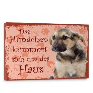 Leinwandbild Schäferhund Haustiere Hunde Tiere   no. 5489