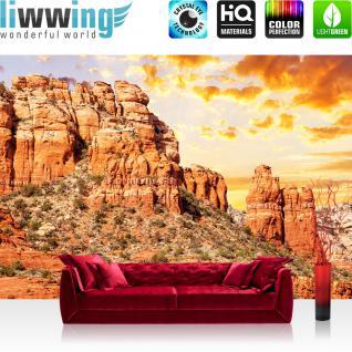 liwwing Vlies Fototapete 300x210 cm PREMIUM PLUS Wand Foto Tapete Wand Bild Vliestapete - Natur Gebirge Steppe - no. 235