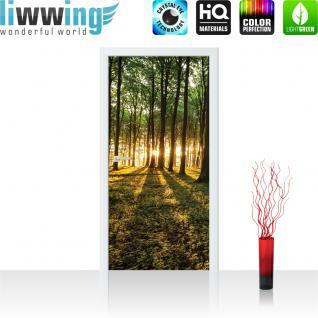 liwwing Vlies Türtapete 91x211 cm PREMIUM PLUS Tür Fototapete Türposter Türpanel Foto Tapete Bild - Sonnenuntergang Wald Bäume Wiese - no. 638