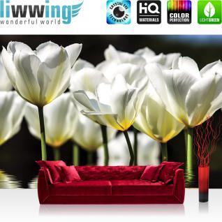 liwwing Vlies Fototapete 312x219cm PREMIUM PLUS Wand Foto Tapete Wand Bild Vliestapete - Blumen Tapete Blume Blüte Wasser Spiegelung Blätter weiß - no. 2448