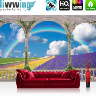 liwwing Vlies Fototapete 416x254cm PREMIUM PLUS Wand Foto Tapete Wand Bild Vliestapete - Pflanzen Tapete Bogen Landschaft Regenbogen Blume Himmel Feld Lavendel bunt - no. 1193
