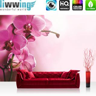 liwwing Fototapete 368x254 cm PREMIUM Wand Foto Tapete Wand Bild Papiertapete - Orchideen Tapete Orchidee Blumen Wellness lila - no. 1809