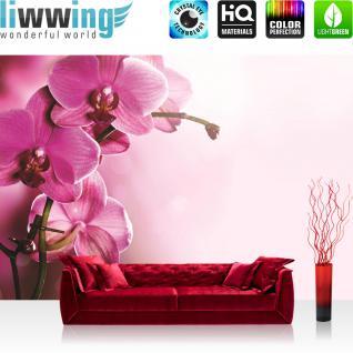 liwwing Vlies Fototapete 312x219cm PREMIUM PLUS Wand Foto Tapete Wand Bild Vliestapete - Orchideen Tapete Orchidee Blumen Wellness lila - no. 1809