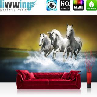 liwwing Vlies Fototapete 300x210 cm PREMIUM PLUS Wand Foto Tapete Wand Bild Vliestapete - Tiere Tapete Pferd Wasser Schimmel Rennpferd blau - no. 1014