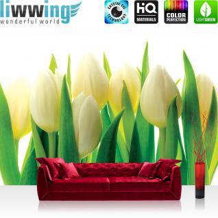 liwwing Vlies Fototapete 416x254cm PREMIUM PLUS Wand Foto Tapete Wand Bild Vliestapete - Blumen Tapete Blume Blüten Blätter Schneeglöcken grün - no. 1690