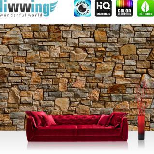 liwwing Vlies Fototapete 400x280 cm PREMIUM PLUS Wand Foto Tapete Wand Bild Vliestapete - Steinwand Steine Wand - no. 155