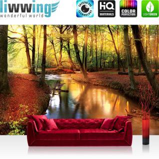 liwwing Fototapete 368x254 cm PREMIUM Wand Foto Tapete Wand Bild Papiertapete - Wald Tapete Wälder Bäume Natur Fluss Herbst braun - no. 1355