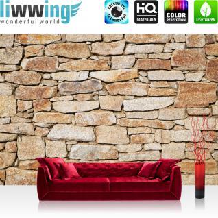 liwwing Vlies Fototapete 400x280 cm PREMIUM PLUS Wand Foto Tapete Wand Bild Vliestapete - Steinwand Steine Wand - no. 163