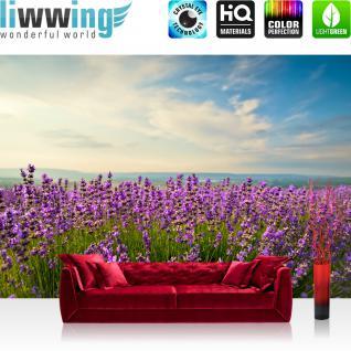 liwwing Vlies Fototapete 350x245 cm PREMIUM PLUS Wand Foto Tapete Wand Bild Vliestapete - Natur Feld Himmel - no. 205