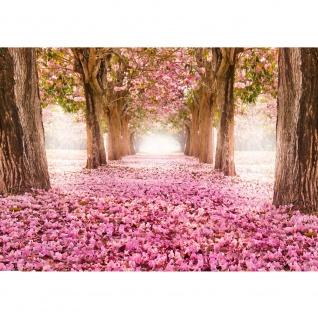 Fototapete Wald Tapete Herbstblätter Wald Bäume Baum Forest Herbst rosa   no. 151