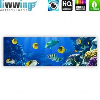 Leinwandbild Underwater World Aquarium Unterwasser Meer Fische Riff Korallenriff | no. 33 - Vorschau 4