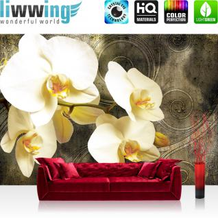 liwwing Vlies Fototapete 416x254cm PREMIUM PLUS Wand Foto Tapete Wand Bild Vliestapete - Orchideen Tapete Blumen Muster Texturen Ranke braun - no. 2902