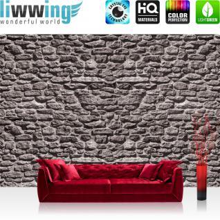 liwwing Vlies Fototapete 152.5x104cm PREMIUM PLUS Wand Foto Tapete Wand Bild Vliestapete - Steinwand Tapete Stein Steinoptik Steine Wand Wall Steintapete grau - no. 1618