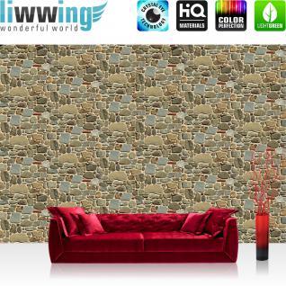 liwwing Vlies Fototapete 416x254cm PREMIUM PLUS Wand Foto Tapete Wand Bild Vliestapete - Steinwand Tapete Stein Steinoptik kleine Steine Muster grau - no. 1429
