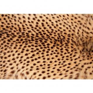 Fototapete Tiere Tapete Leopard Tier Braun Natur braun | no. 181