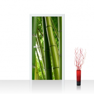 Türtapete - Paradies of Bamboo Bambus Wald Bambuswald Dschungel Natur Bäume | no. 75