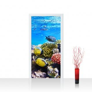 Türtapete - Underwater Reef Aquarium Unterwasser Meer Fische Riff Korallenriff   no. 105