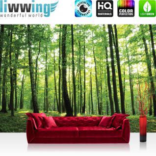 liwwing Vlies Fototapete 350x245 cm PREMIUM PLUS Wand Foto Tapete Wand Bild Vliestapete - Wald Tapete Bäume Wald Sonne Wiese grün - no. 528