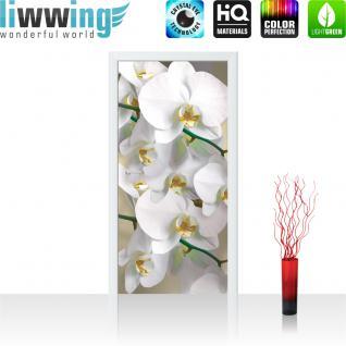 liwwing Vlies Türtapete 91x211 cm PREMIUM PLUS Tür Fototapete Türposter Türpanel Foto Tapete Bild - Orchideen Blüten Pflanze - no. 321