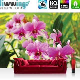 liwwing Vlies Fototapete 104x50.5cm PREMIUM PLUS Wand Foto Tapete Wand Bild Vliestapete - Orchideen Tapete Orchidee Pflanzen Blumen pink - no. 1901