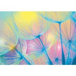 Fototapete Blumen Tapete Pusteblumen negativ Natur bunt blau | no. 1071