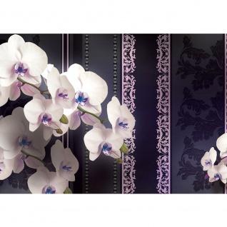 Fototapete Orchideen Tapete Orchidee Blumen Ornamente anthrazit   no. 1824