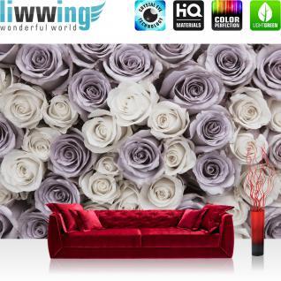 liwwing Vlies Fototapete 416x254cm PREMIUM PLUS Wand Foto Tapete Wand Bild Vliestapete - Blumen Tapete Blume Blüten Rosen lila - no. 1601