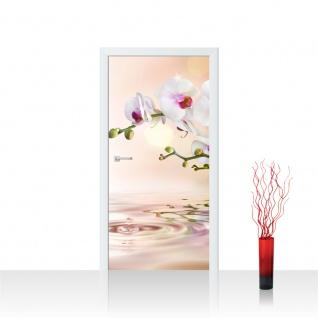 Türtapete - Orchidee Blumen Blumenranke Weiß Pink Natur Pflanzen Abstrakt | no. 200