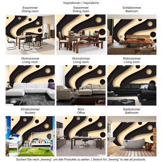 liwwing Fototapete 254x168 cm PREMIUM Wand Foto Tapete Wand Bild Papiertapete - 3D Tapete Abstrakt Streifen Kreise Fächer Design Kunst Muster 3D schwarz - no. 808 - Vorschau 5
