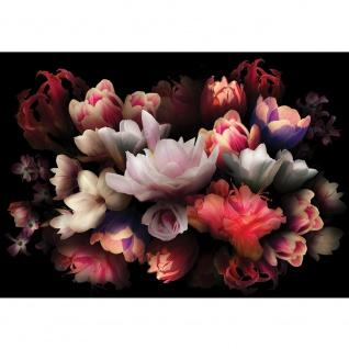 Fototapete Natur Tapete Blume Bunte Rose Dunkelheit Bukett rot   no. 4324 - Vorschau 1